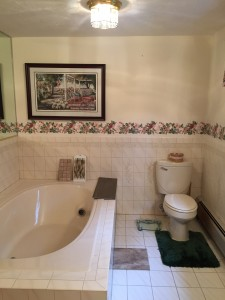 hopkinton bathroom renovation